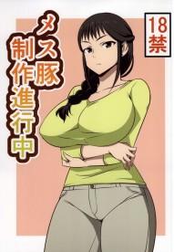 Mesu Buta Seisaku Shinkouchuu